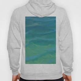 Water Test I Hoody