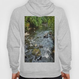 Clear Water Hoody
