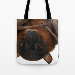 Little Red Flying Fox Hanging Out Tote Bag