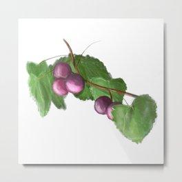 You're so Grape Metal Print