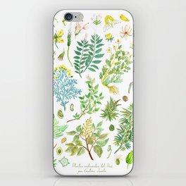 plantas medicinales iPhone Skin