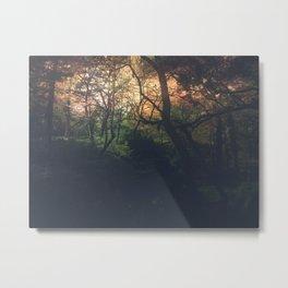 Ethereal Woods Metal Print