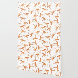 Crawfish Wallpaper