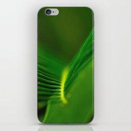 Fern Lines iPhone Skin