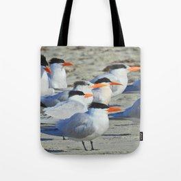Elegant Terns Tote Bag