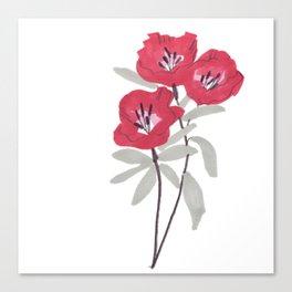Clarkia Red Flower Canvas Print