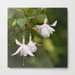 Beautifully Glamorous Fuchsia Flower #decor #society6 #buyart Metal Print