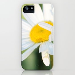 Smiling in the morning light iPhone Case