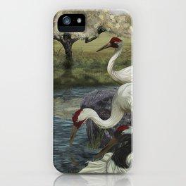 Cranes in Repose iPhone Case