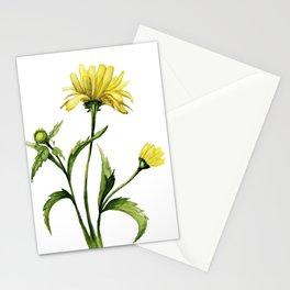 beautiful yellow aquarelle flowers pattern Stationery Cards