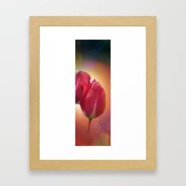 triptych - 4 tulips on watercolor - middle Framed Art Print