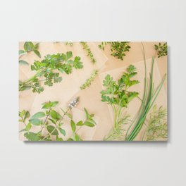 Fresh herbs on parchment paper background Metal Print