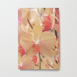 The mystery of orchid (14) Metal Print
