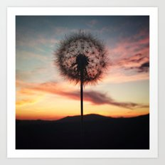 Just Dandy - Square Art Print