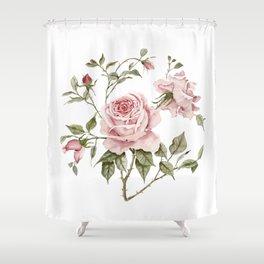 Pink Roses – Original Watercolor Shower Curtain