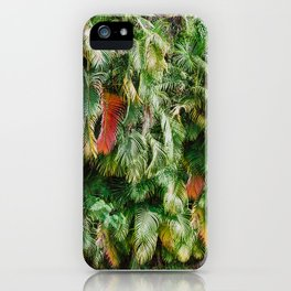 In Love with the Fall in the Tropics iPhone Case