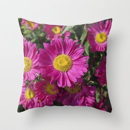 Summer Asters 4636 Throw Pillow