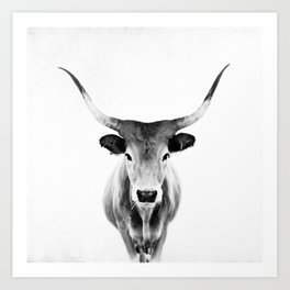 Honey - black and white Art Print