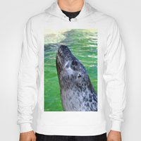 seal Hoodies featuring seal by  Agostino Lo Coco