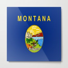 flag of montana,america,usa,big sky,treasure state, montanan,west,Billings,missoula,great falls Metal Print