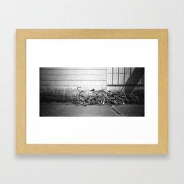 Ride The line Framed Art Print