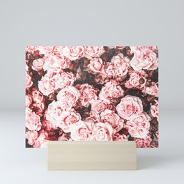 Vintage Roses - Pink Perfection Mini Art Print