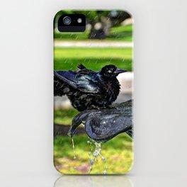 Common Grackle Bath iPhone Case