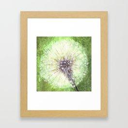 Green Dandelion Framed Art Print
