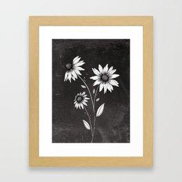 Wildflowers Ink Drawing   Black Background Framed Art Print