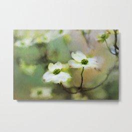 Dogwood Blooms Metal Print