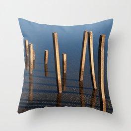 Walking Water Stilts Throw Pillow