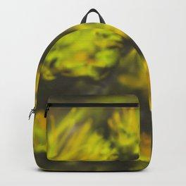 Dandelions DP151006d Backpack