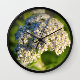 Delicate Days Wall Clock