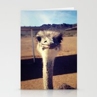 ostrich Stationery Cards featuring OSTRICH by Kaitlin Bloom