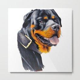 Rottweiler Metal Print