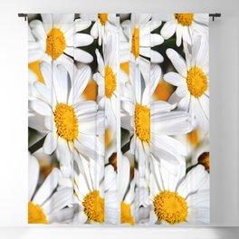 Daisy Flowers 0136 Blackout Curtain