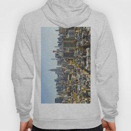 New York City from Tribeca. Hoody