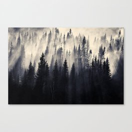 Borealis Forest in smoke Canvas Print