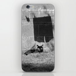 The cat and the pants iPhone Skin