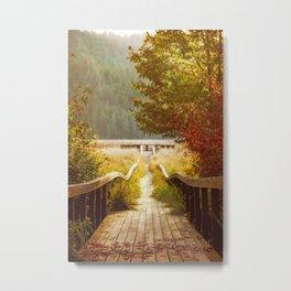 Autumn mood, Washington Metal Print