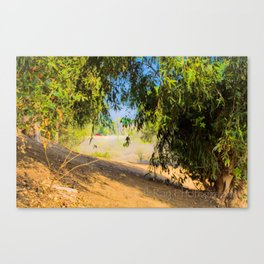 a walk into trees Canvas Print