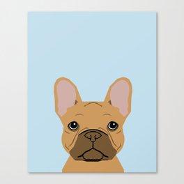 fawn frenchie dog art portrait - french bulldog art print Canvas Print
