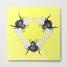 yellow bees Metal Print