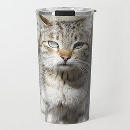Cat pictures, cat eyes, pictures of the most beautiful cat eyes, cute cat, innocent cat pictures, cl Travel Mug