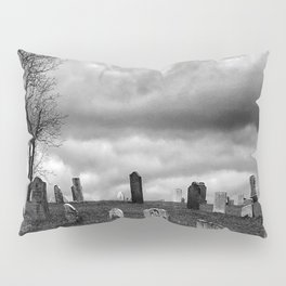 Decay and Ruin Pillow Sham