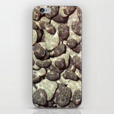 Shallow Waters iPhone & iPod Skin