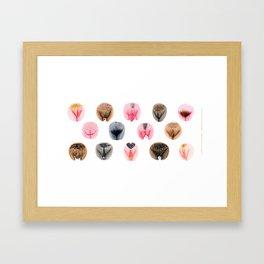Vulva Diversity - Pink & Brown Framed Art Print