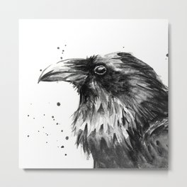 Raven Watercolor Bird Animal Metal Print