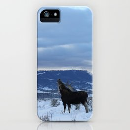 Moose at Antelope Flats iPhone Case