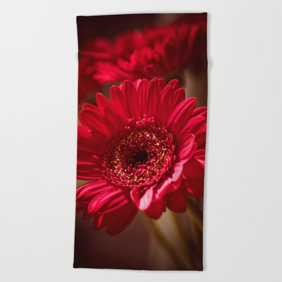 Beautiful Red Gerbera Beach Towel